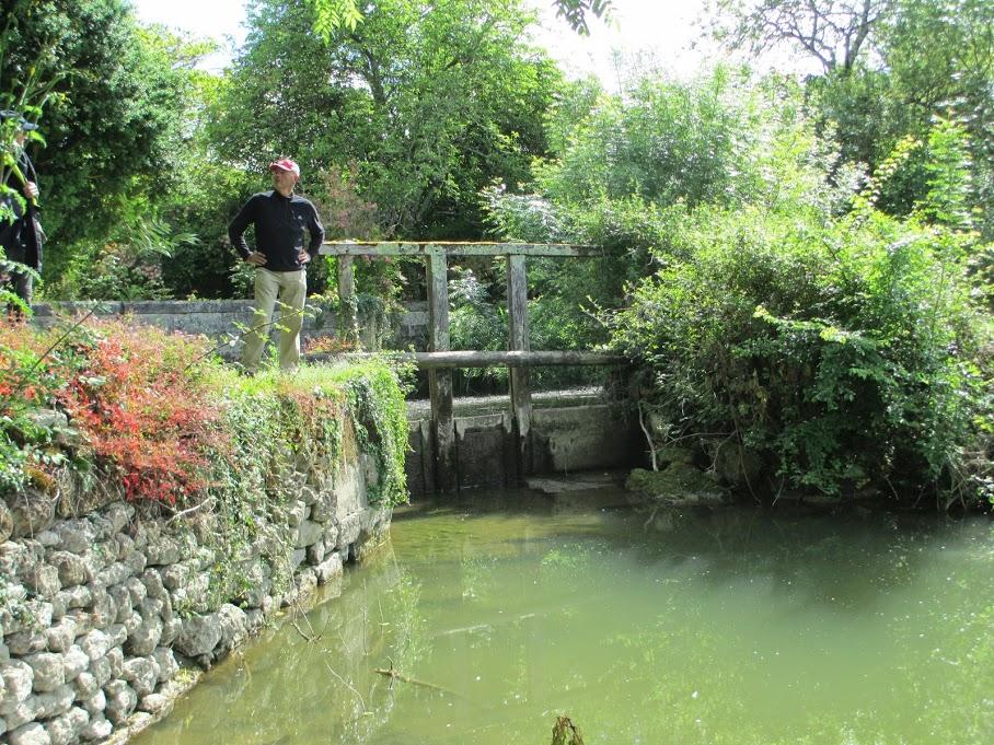 l'eau verte du canal...